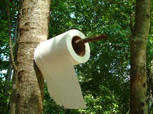 Green TP
